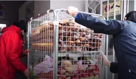 Le «Caddy» contre le gaspillage alimentaire «est devenu trop petit»