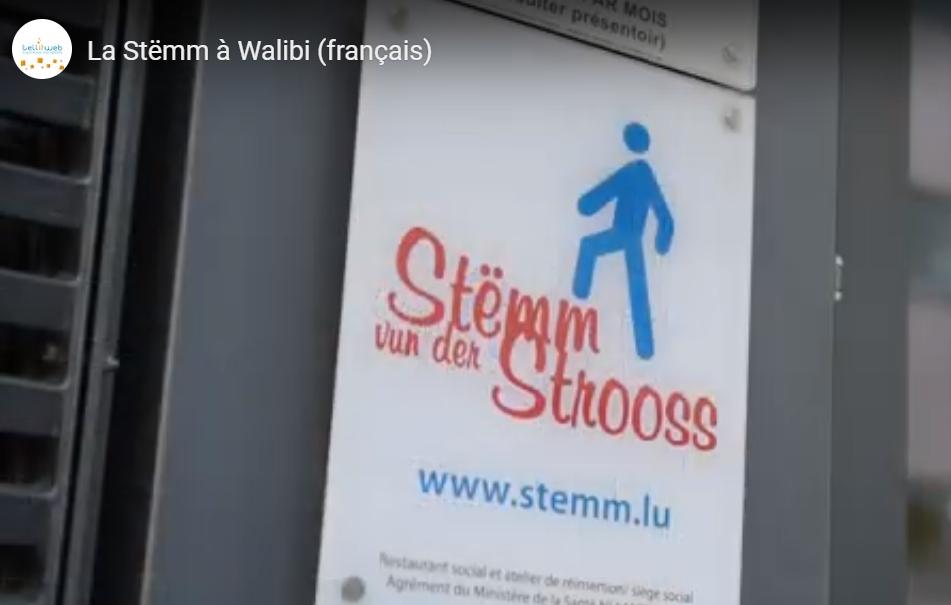Excursion de la Stëmm vun der Strooss à Walibi